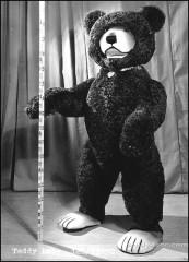 Тедди-Няня, 150 см, 1960 История мишки Тедди, teddy bear steiff history