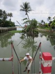 Пляж Ламаи Самуи Таиланд, плажи Самуи описание и отзыв