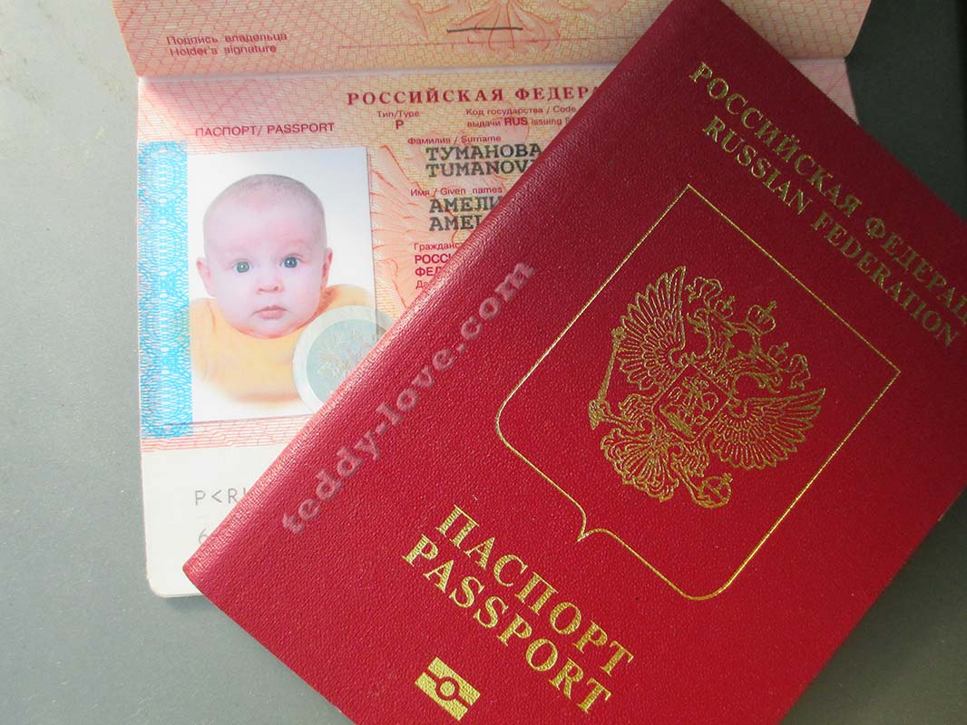 оформление загранпаспорта в уфе бланк заявления