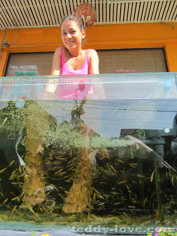 Рыбки лечат псориаз