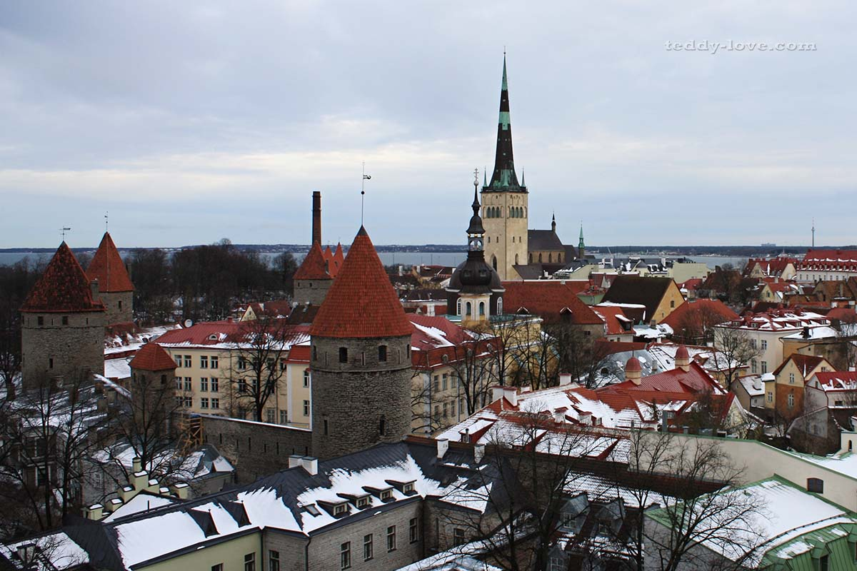 Зимний Таллинн манит посидеть в уютном кабачке или покопаться в сокровищах сувенирных лавочек