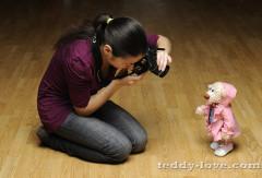 Как фотографировать мишку Тедди?
