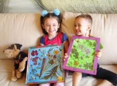 Как сделать гербарий с детьми
