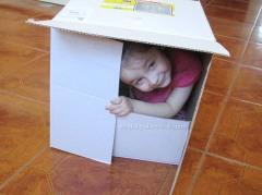 Отличная игрушка - коробка!