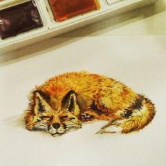Моя лисичка - первые рисунки)
