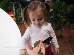 отзыв Сад бабочек и Стеклянный Лабиринт на Большой Морской
