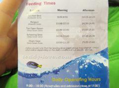 Кликайте - расписание кормежек - шоу в океанариуме тут