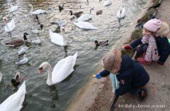 Куда пойти с детьми в Париже? Отзыв - зоопарк в Париже
