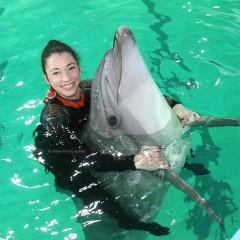 Купание с дельфинами Петербургский дельфинарий
