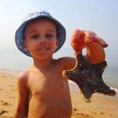 Живность пока находим на море)))