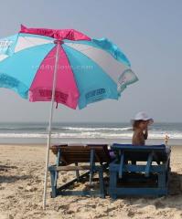 Вот так выглядят лежаки и зонтики предоставляемые шеками