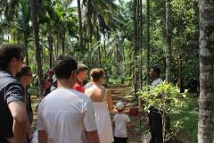 Экскурсия на плантацию специй (в стоимость входит обед)