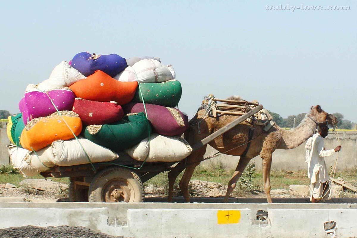 Обычный такой транспорт для перевозки груза