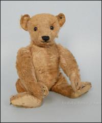 медведь PAB 5328, 1906 год