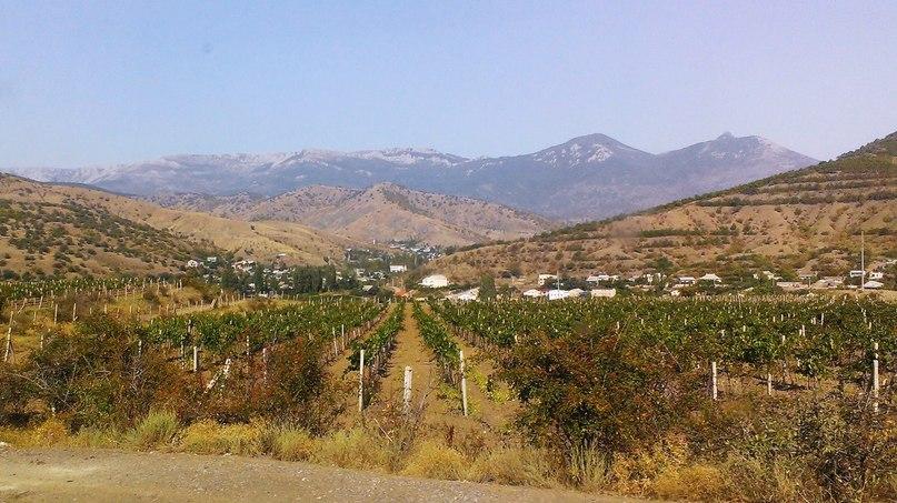 Автодороги вдоль побережья очень живописные – море, горы, поселки, виноградники, леса