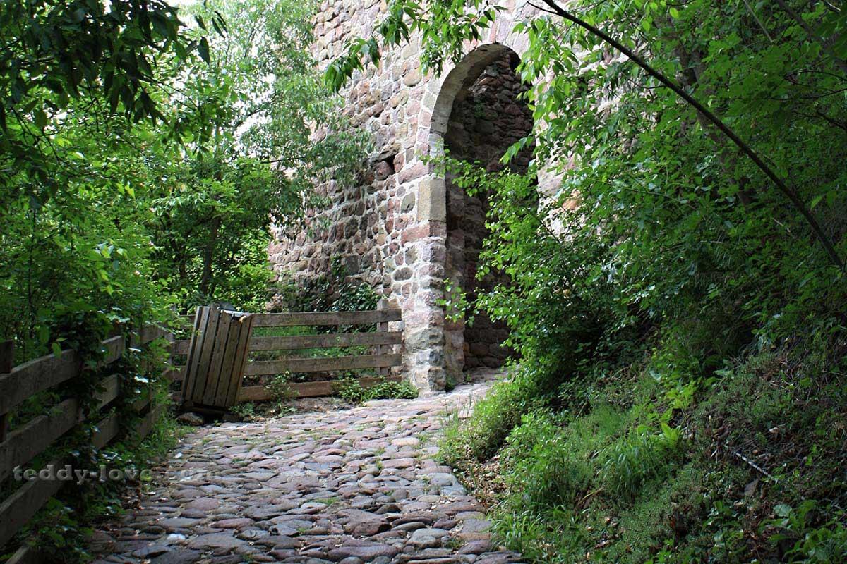 Дорога, ведущая в замок, современному человеку кажется узкой тропинкой